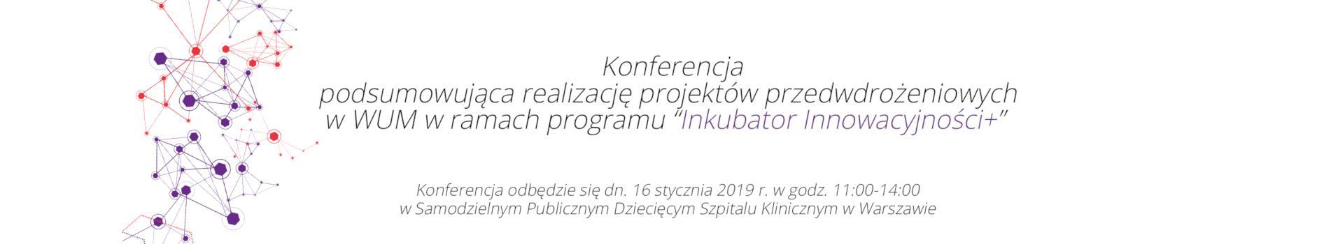 Konferencja - podsumowanie projektu